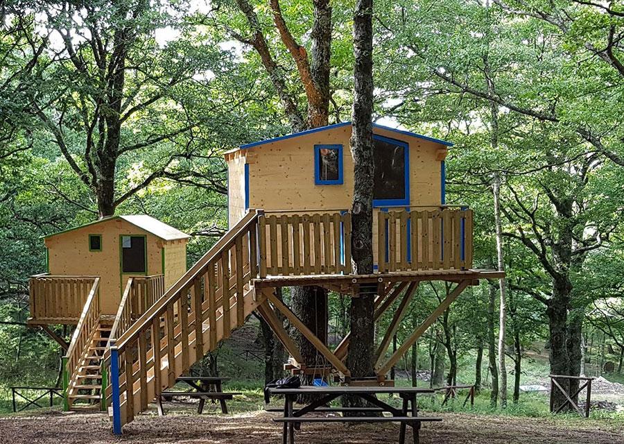Case sugli alberi nel parco avventura di Biccari